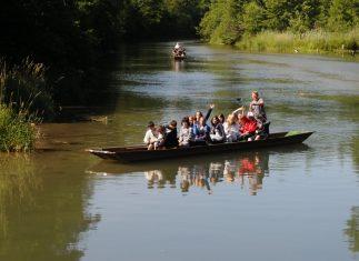 Taubergießen 6/2009: Schulklasse Toischer